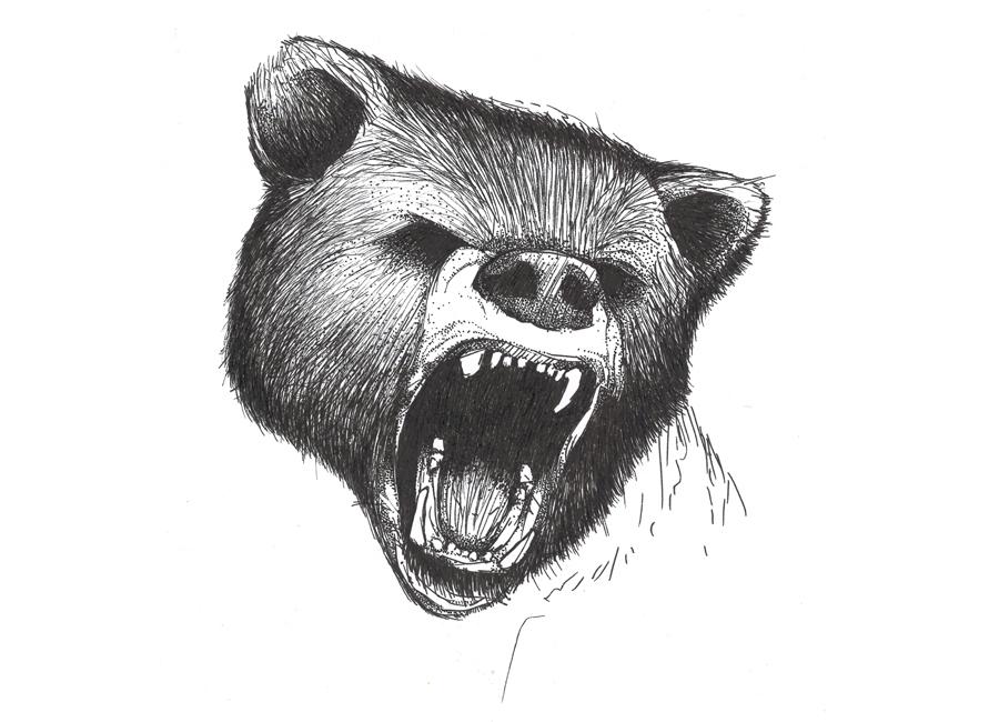 angry-bear-sketch